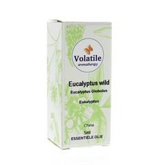 Volatile Eucalyptus wild (5 ml)