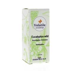 Volatile Eucalyptus wild (10 ml)