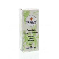 Volatile Geranium maroc (5 ml)