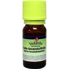 Volatile Salie lavandulifolie (5 ml)