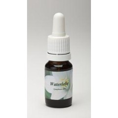 Star Remedies Waterlelie (10 ml)