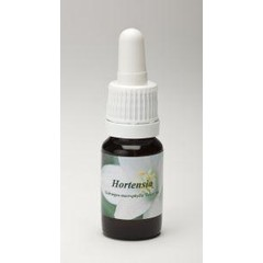 Star Remedies Hortensia (10 ml)