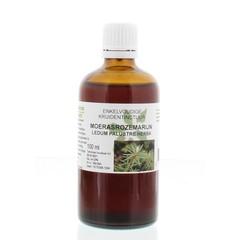 Natura Sanat Ledum palustre / moerasrozemarijn tinctuur (100 ml)