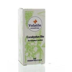 Volatile Eucalyptus smithii bio (5 ml)