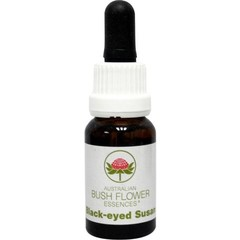 Australian Bush Black eyed Susan (15 ml)