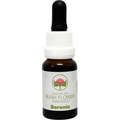 Australian Bush Boronia (15 ml)