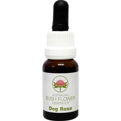 Australian Bush Dog rose (15 ml)