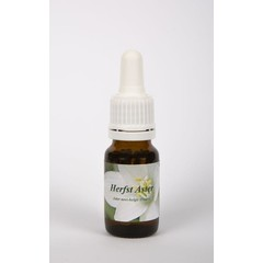 Star Remedies Herfstaster (10 ml)