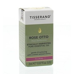 Tisserand Roos Otto ethically harvested (2 ml)