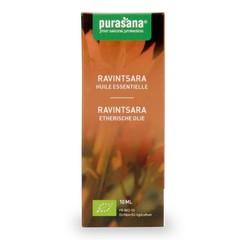Purasana Ravintsara (10 ml)