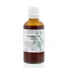 Natura Sanat Boswellia / yucca complex tinctuur (50 ml)