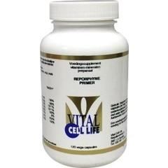 Vital Cell Life Reporphyne primer (120 capsules)