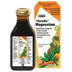 Salus Floradix magnesium (250 ml)