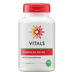 Vitals Vitamine B5 250 mg (100 capsules)