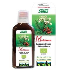Salus Meidoornsap (200 ml)