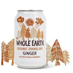 Whole Earth Ginger (330 ml)