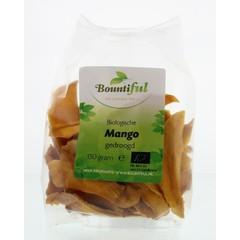 Bountiful Mango gedroogd bio (150 gram)