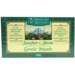 Maharishi Ayurv Gezonde luchtwegen thee (20 zakjes)
