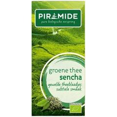 Piramide Groene thee sencha eko (20 zakjes)