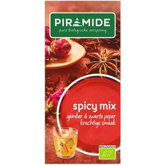 Piramide Spicy thee eko (20 zakjes)