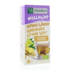 Damhert Tea time gember limoenthee (20 zakjes)