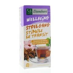 Damhert Tea time stoelgangthee (20 zakjes)