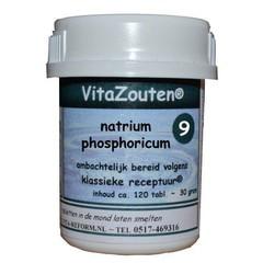 Vitazouten Natrium phosphoricum VitaZout Nr. 09 (120 tabletten)