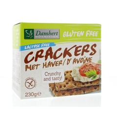 Damhert Crackers haver (230 gram)