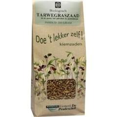 Peuleschil Tarwegras zaad (200 gram)