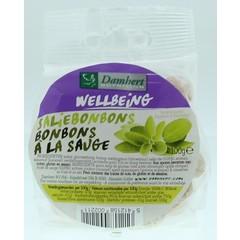 Damhert Saliebonbons (100 gram)