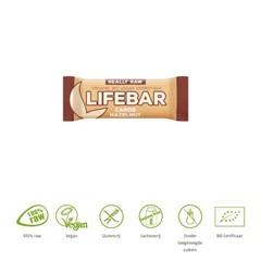 Lifefood Lifebar carobe hazelnoot bio (47 gram)