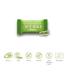 Lifefood Mini lifebar energiereep appel raw & bio (25 gram)