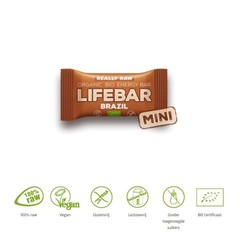 Lifefood Mini lifebar energiereep Brazil raw & bio (25 gram)