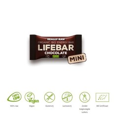 Lifefood Mini lifebar energiereep chocolade raw & bio (25 gram)