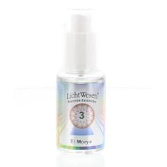 Lichtwesen El morya tinctuur 3 (30 ml)