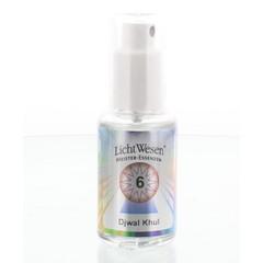 Lichtwesen Djwal khul tinctuur 6 (30 ml)