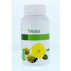 Purasana Tribulus vegan (90 capsules)