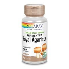 Solaray Agaricus gefermenteerd 500 mg (60 vcaps)