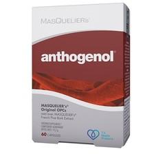 Masqueliers Anthogenol (60 capsules)