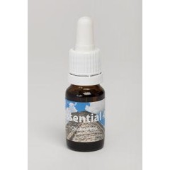 Seven Essentials Chichen itza (10 ml)