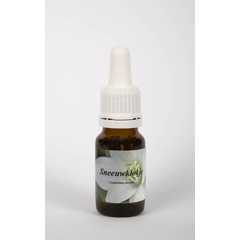 Star Remedies Sneeuwklokje (10 ml)