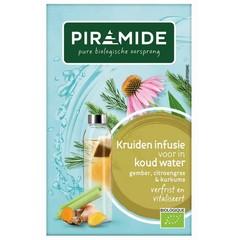 Piramide Infusie voor koude thee gember (27 gram)