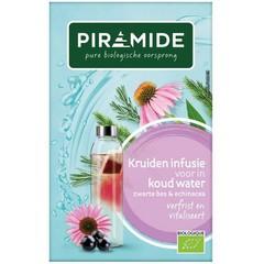Piramide Infusie voor koude thee zwarte bes (27 gram)