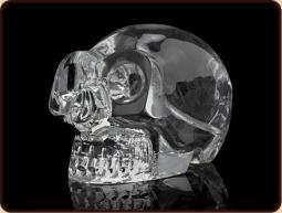 Ruben Robijn Ruben Robijn Crystal skull feng shui kristal medium (1 stuks)