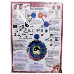 Alive Feng shui kaart met kristal (1 stuks)