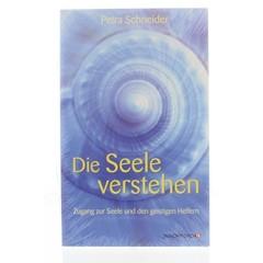 Lichtwesen Die seele verstehen (Boek)