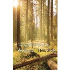 Ankh Hermes Wat gebeurt er als je dood gaat Hans Stolp (boek)