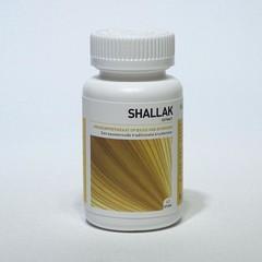 Ayurveda Health Shallak (60 tabletten)