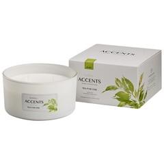 Bolsius Accents geurkaars multi lont tea for one (1 stuks)