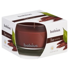 Bolsius Geurglas 63/90 true scents oud wood (1 stuks)